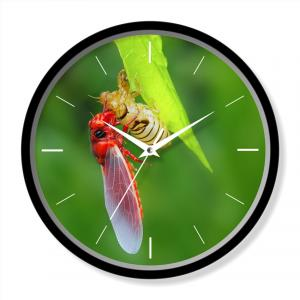 Green color wall clock